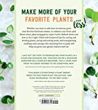 Plant Parenting: Easy Ways to Make More