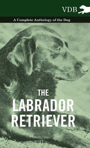 Read Online The Labrador Retriever - A Complete Anthology of the Dog ebook