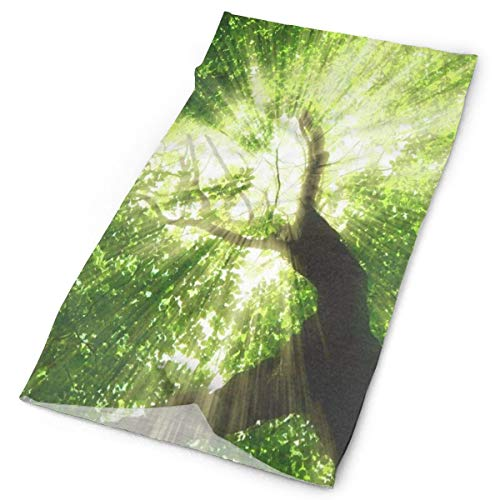 NMCEO Sports Headband Green Forest Tree Sky Stylish Sweatband Outdoor Activities for Girls