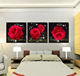 Mon Art Love Of Red Roses Modern Decorative Wall Canvas Set Of 3(UnStretched and UnFramed)