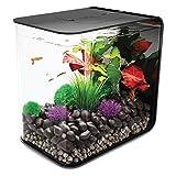 BiOrb by Oase Flow 8 Gallon Aquarium