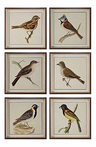 (Spring Soldiers Bird Prints, S/6)