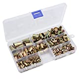 AUTOUTLET 150PCS Rivet Nut Tool Kit Mixed Zinc Carbon Steel Threaded Rivnut Nutsert Insert Set M3/M4/M5/M6/M8/M10