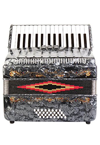 Rossetti Piano Accordion 32 Bass 30 Piano Keys 3 Switches Grey by Rossetti (Image #5)