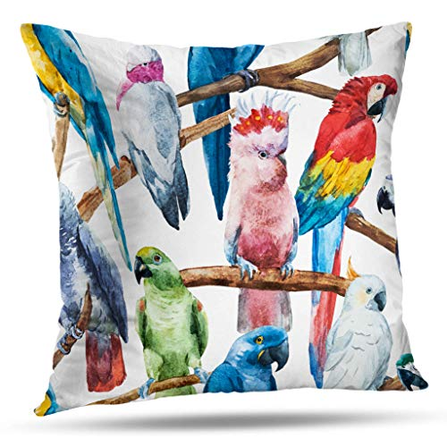 (ONELZ Throw Pillow Covers, Watercolor Bright Parrot Tropical Wallpaper Bird African Grey Double-Sided Pattern Sofa Cushion Cover Couch 18 x 18 Decorative Home Gift Bed Pillowcase)