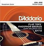 D\'Addario EFT13 Flat Tops Phosphor Bronze Acoustic Guitar Strings, Resophonic Guitar, 16-56