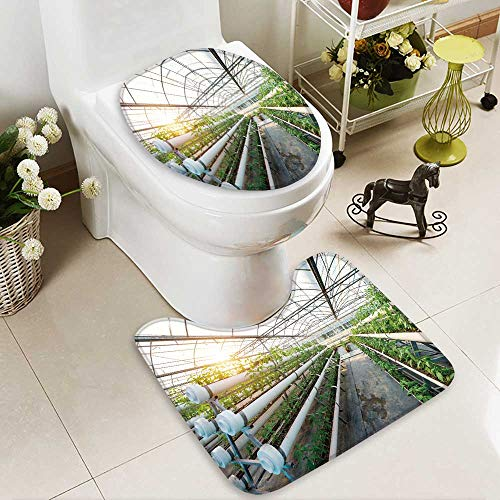 Bathroom Non-Slip Floor Mat vegetables plants growing in a greenhouse witch made from metal profile with High Absorbency by Analisahome