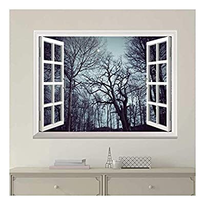 White Window Looking Out Into a Forest with...