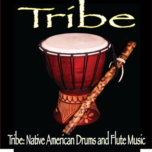 Tribe: Native American Drums a...