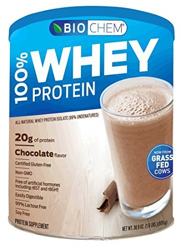 Biochem Sports Whey Protein Isolate Powder Chocolate    1 9 Lb