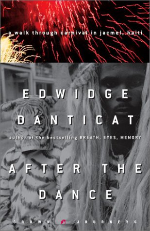 book cover of After the Dance