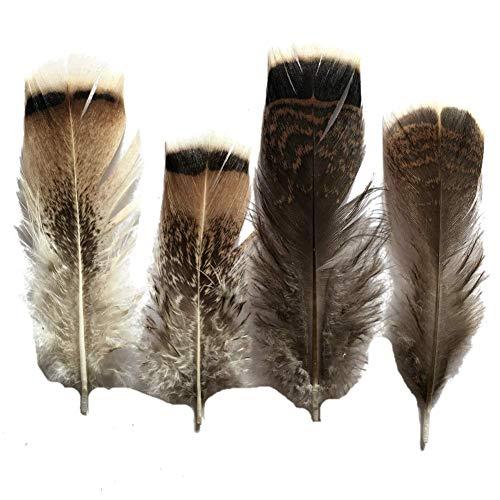 - Sowder 20pcs Turkey Pheasant Plumage Feathers 4-8 Inches Home Wedding Decoration
