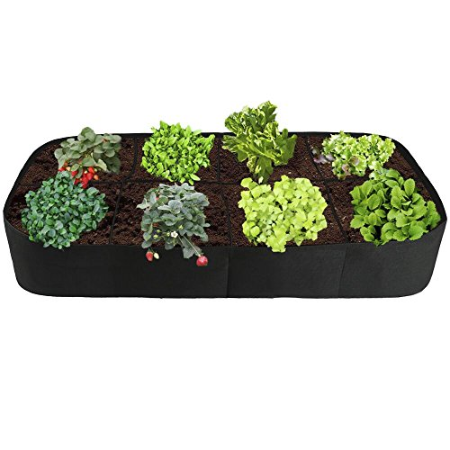 (Raised Garden Bed,Divided 8 Grids Fabric Raised Planting Bed Rectangle Garden Grow Bag for Herb Flower Vegetable Plants,3ft x 6ft)