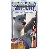 Polar Bear: Arctic Odyssey
