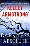 img - for A Darkness Absolute: A Novel (Casey Duncan Novels) book / textbook / text book