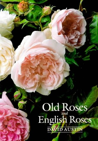 Old Roses and English Roses
