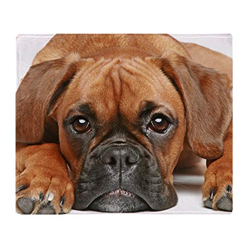 CafePress German Boxer Dog Soft Fleece Throw Blanket, 50