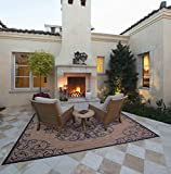 Gertmenian 21648 Nautical Tropical Carpet Outdoor Patio Rug, 5x7 Standard, Brown Center Medallion
