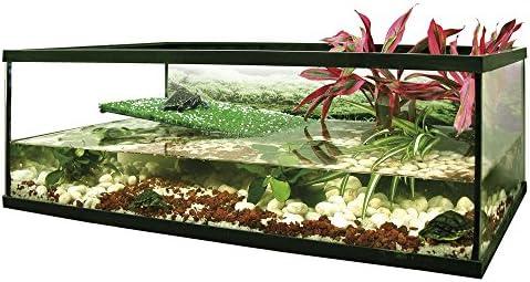 ICA FL60 Tortuguera de Cristal Florida: Amazon.es: Productos para ...