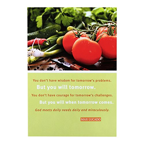 Difficult Times Inspirational Boxed Cards - Max Lucado - Tomatoes
