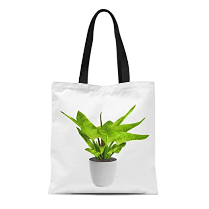 862fd32b6b8b Amazon.com: Semtomn Canvas Tote Bag Shoulder Bags Green Plant Bird ...