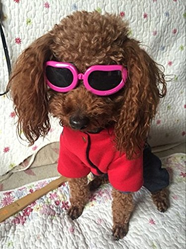 Enjoying Dog Goggles - Small Dog sunglasses Waterproof Windproof UV Protection for Doggy Puppy Cat - Pink from Enjoying