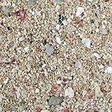 Carib Sea Arag-Alive Substrate, Bimini Pink, 10 lb.