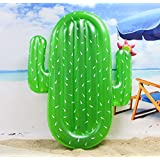 Winthome cactus Swimming Pole Lake Inflatable Floats and Loungers for Adults 71 Inch