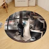 Gzhihine Custom round floor mat Comfortable Room with Panoramic Window. Dog and Cat Sitting at the Ladder