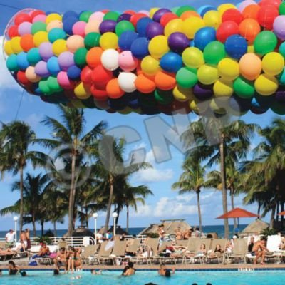 Balloon Drop Kit 2000 Balloons by BURTON AND BURTON