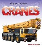 Cranes, Amanda Askew, 1554077044