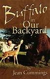 Buffalo in Our Backyard, Jean Cummings, 0967995906