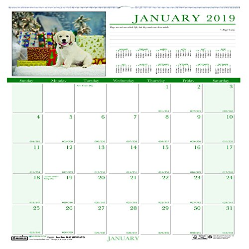 Earthscapes Puppies Wall Calendar - House of Doolittle 2019 Monthly Wall Calendar, Earthscapes Puppies, 12 x 12 Inches, January - December (HOD3651-19)