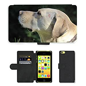Hot Style Cell Phone Card Slot PU Leather Wallet Case // M00117218 Dog Head Snout Profile Animal Pet // Apple iPhone 5C