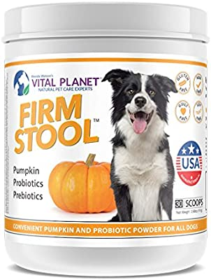 is pumpkin good for dog with diarrhea