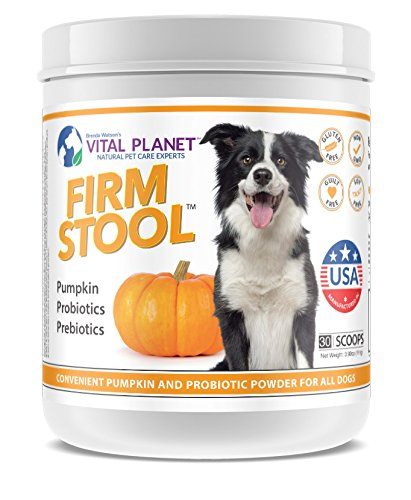 Vital Planet - Firm Stool - Eliminates Dog Diarrhea and Gas - Pumpkin, Probiotics and Prebiotics For Healthy Digestion, Immune Support and Reqularity - 111 Grams 30 Servings by Vital Planet