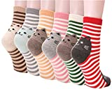 Dosoni Girl Cartoon Animal Cute Casual Cotton Novelty Crew socks 6 packs-Gift Idea (Stripe Cats)