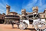 OFILA Bangalore Palace Backdrop 7x5ft India Architecture Asian Battlement Capital Government Landmark Historical Building Nature Royal Palace King Residence Studio Props