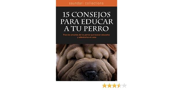 15 consejos para educar a tu perro (Spanish Edition), Vittorio Calvetti, Ana Laura Laglere - Amazon.com