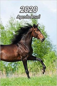 2020 Agenda Anual: Caballo andaluz | Ecuestre | 129 Páginas | Tamaño A5 | Planificador Semanal | 12 Meses | 1 Semana en 2 Páginas | Agenda Semana Vista | Tapa Blanda
