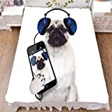 iPrint Bed Skirt Dust Ruffle Bed Wrap 3D Print,Smartphone Groovy Cool Headphones Animal Funny,Best Modern Style Bed Skirt for Men and Women by 70.9''x78.7''