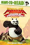 Po's Secret Move (Kung Fu Panda TV)