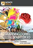 Learning Corel Painter X3 [Online Code]