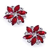 ElegantPark AJ Shoes Dress Hat Accessories Fashion Rhinestones Crystal Shoe Clips 2 Pcs Red