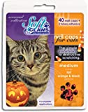 Feline Soft Claws 40-Pack Pet Halloween Colors Nail Cap Kit - Medium - Black and Orange