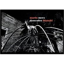 Mario Merz/Domenico Bianchi