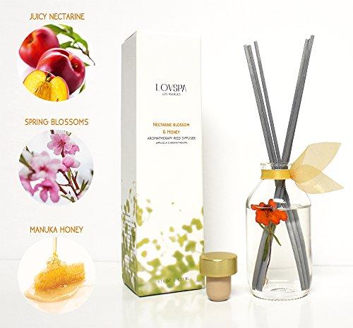 LOVSPA Nectarine Blossom & Honey Essential Oil Reed Diffuser Gift Set | Nectarine & Peach Sorbet, Blackcurrant, Plum, Spring Blossoms & Manuka Honey | Best Gift Idea! Vegan. Made in The USA by LOVSPA