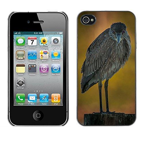 Premio Sottile Slim Cassa Custodia Case Cover Shell // F00021431 oiseau Malheureux // Apple iPhone 4 4S 4G