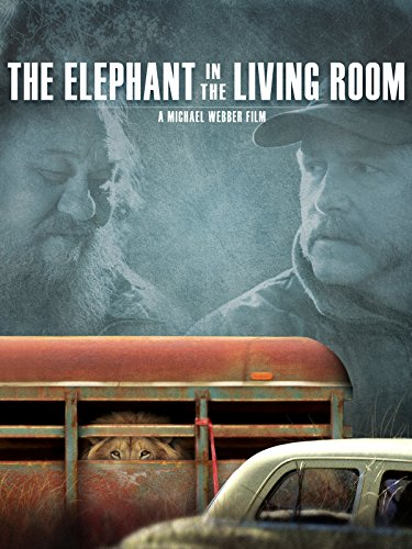 (The Elephant in the Living Room)