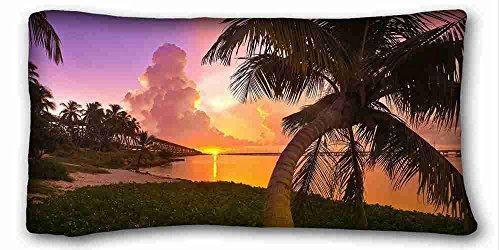 (Generic Personalized ( Nature Sunrise Sunset sunset landscapes nature Florida palm trees parks sea ) DIY Pillow Cover Size 20